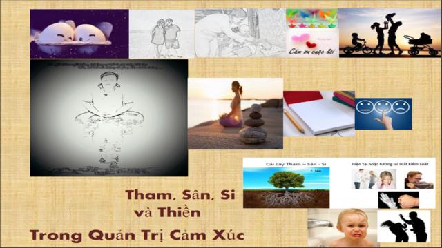 Tham Sân Si và Thiền Trong Quản Trị Cảm Xúc